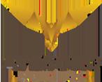 Avesoro Holdings's Company logo
